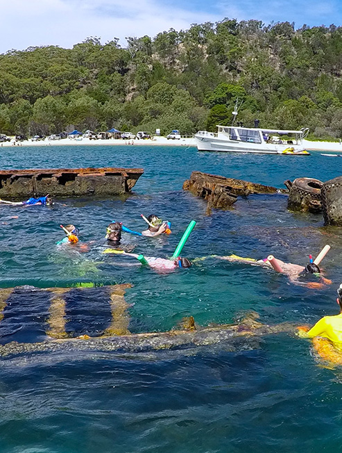 Snorkelling at Moreton island shipwrecks