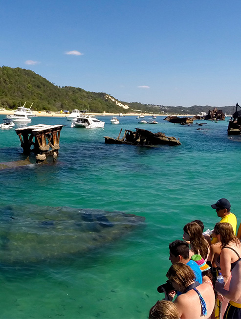 People viewing fish at Tangalooma Wrecks