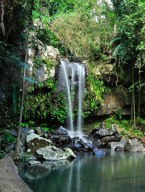 Waterfall in Hinterland Gold Coast